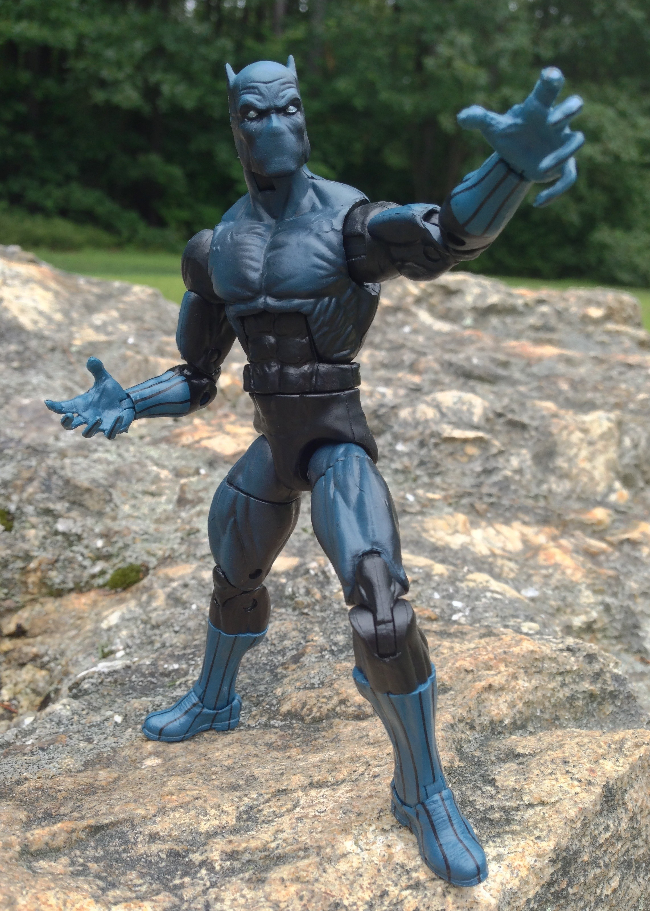 2013 Marvel Legends Black Panther Wave 5 Action Figure Hasbro
