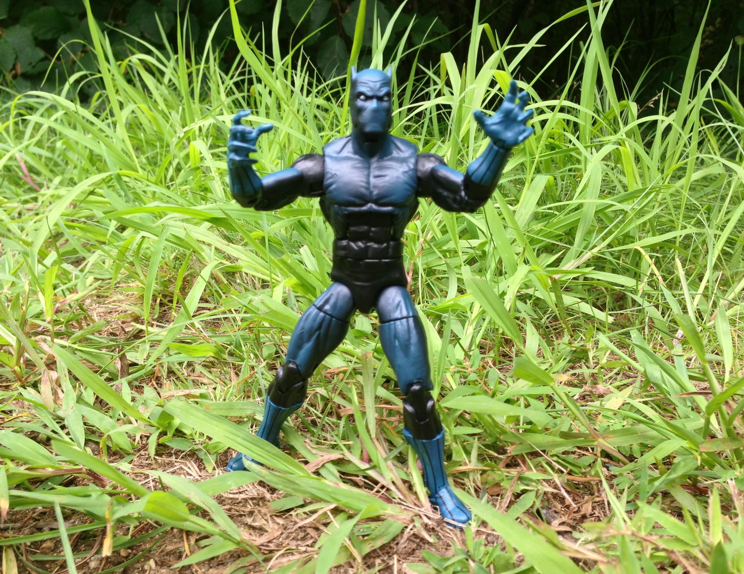 Marvel Legends Black Panther 2013 Figure Stalks in the Jungle