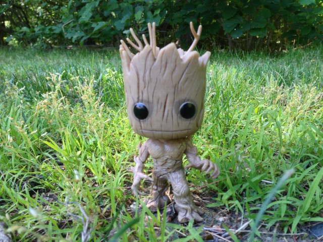 Funko POP! Vinyl Groot Figure in the Wild