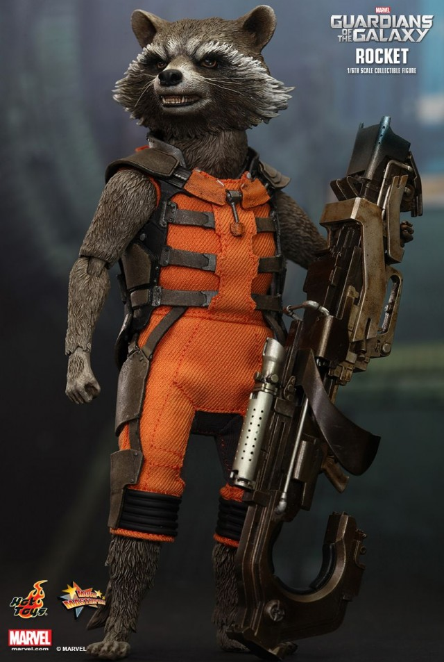 Guardians of the Galaxy Hot Toys Rocket Raccoon Sixth Scale Figure with Rifle