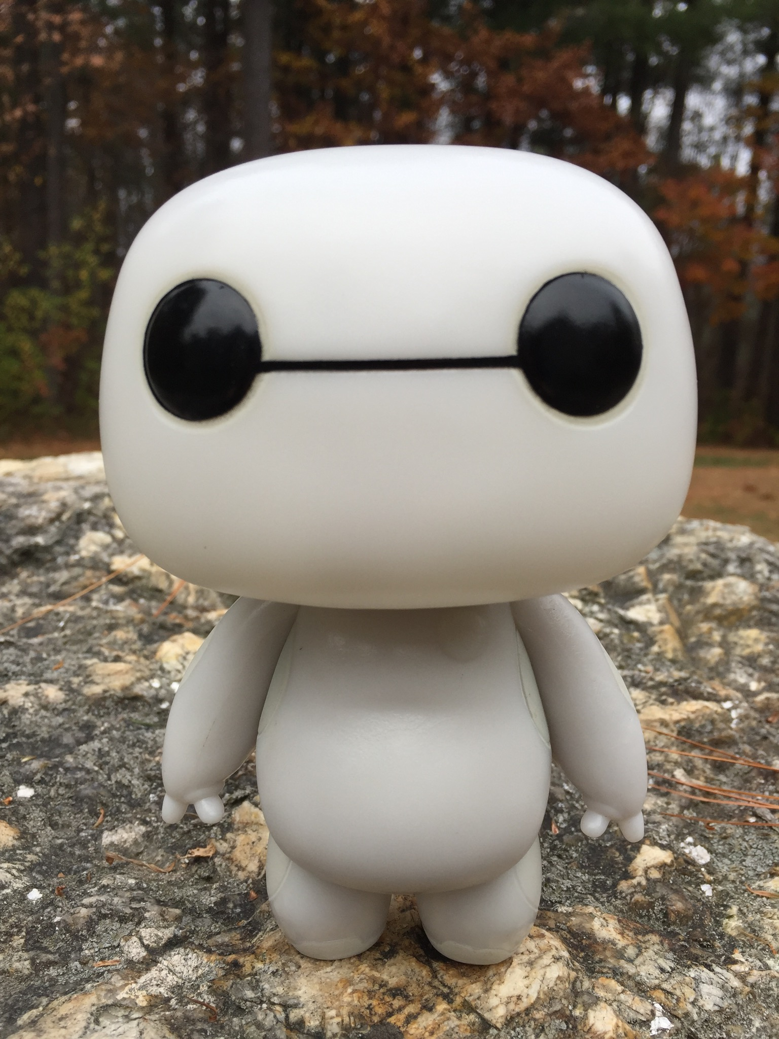 Funko Pop Vinyls Baymax Glow In The Dark Review Amp Photos