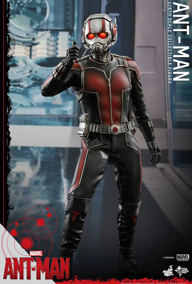 Ant-Man Hot Toys Movie Masterpiece Series Sixth Scale Figure