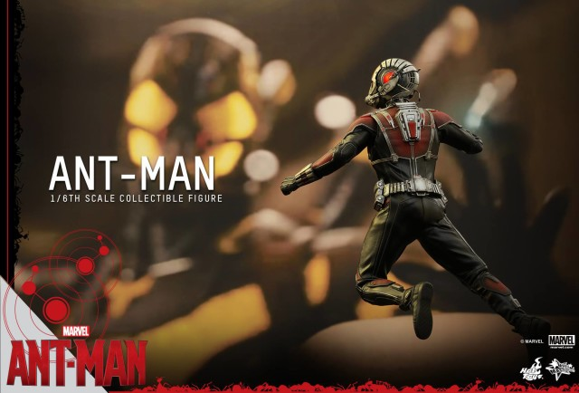 Back of Ant-Man Hot Toys Figure Movie Masterpiece Series