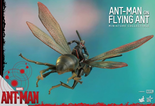 Back of Hot Toys Antony the Flying Ant Toy