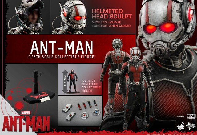 Hot Toys Ant-Man Sixth Scale Figure and Accessories