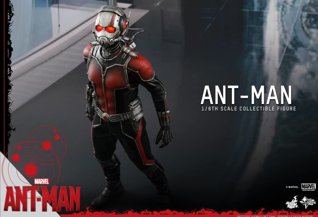 Hot Toys MMS308 Ant-Man Sixth Scale Figure