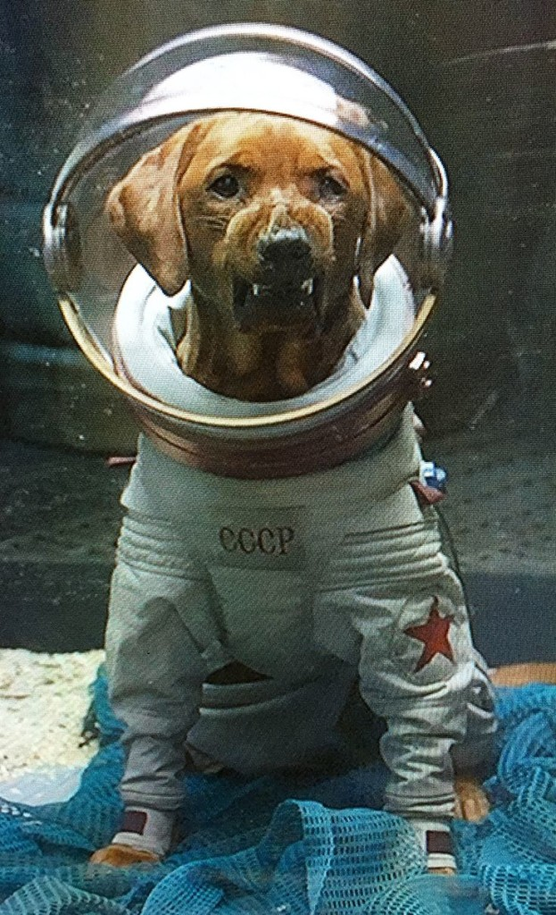 Guardians of the Galaxy Movie Cosmo the Space Dog