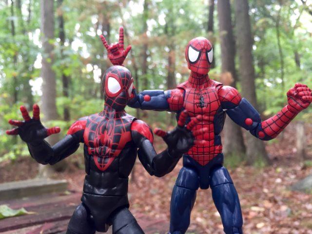 Marvel Legends Miles Morales and Peter Parker Spider-Man Figures Size Comparison