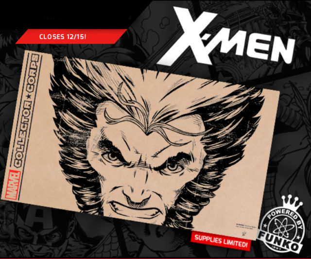 x-men-marvel-collector-corps-december-2016-box