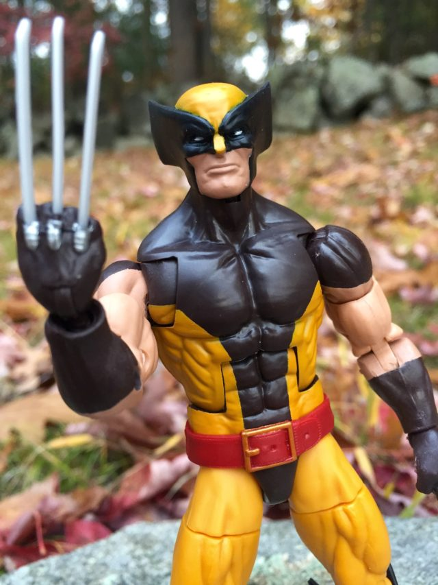 X-Men Marvel Legends Wolverine 6 Inch Figure Review