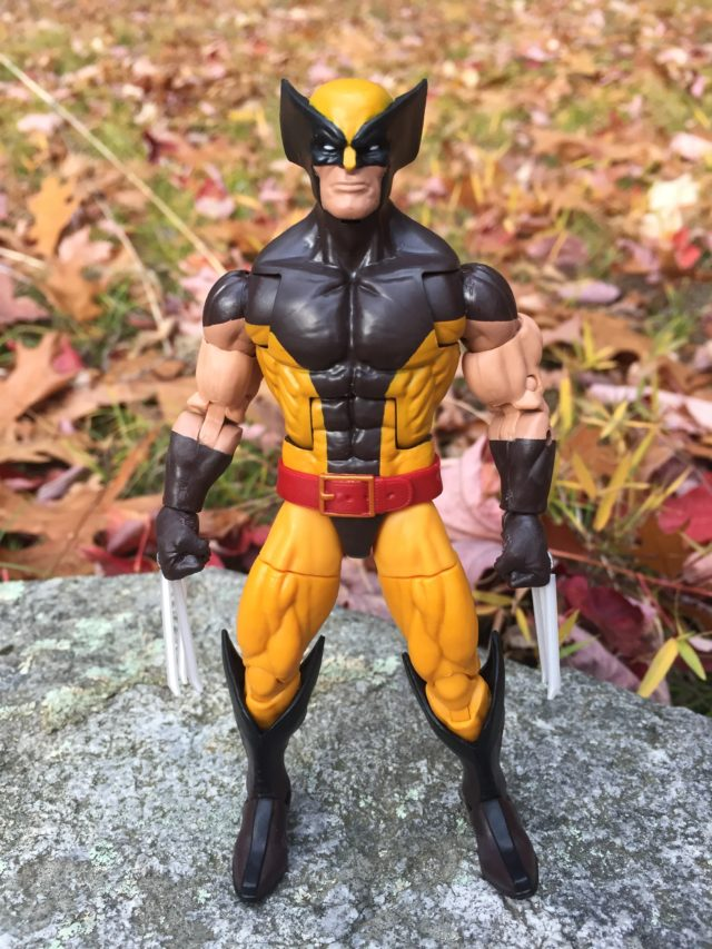Marvel Legends 2016 Brown Costume Wolverine Figure