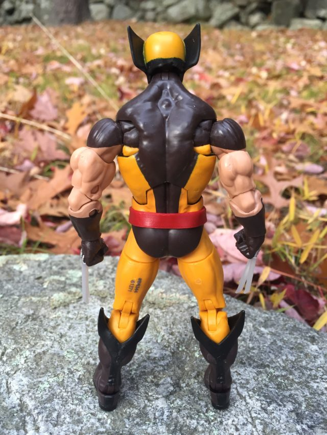 Back of Marvel Legends X-Men Wolverine Figure