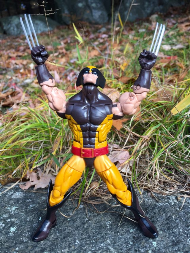Wolverine X-Men Legends Hasbro 2016 Figure Holding Claws in Air
