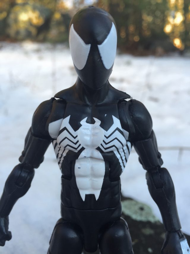 Close-Up of Hasbro Marvel Legends 6' Symbiote Spider-Man Figure