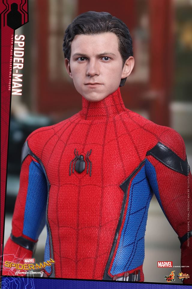 Hot Toys Spider-Man Homecoming Tom Holland Head Portrait