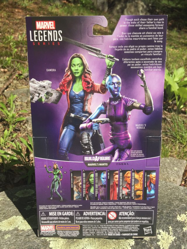 Back of Box Gamora Marvel Legends Guardians of the Galaxy 2 Figure
