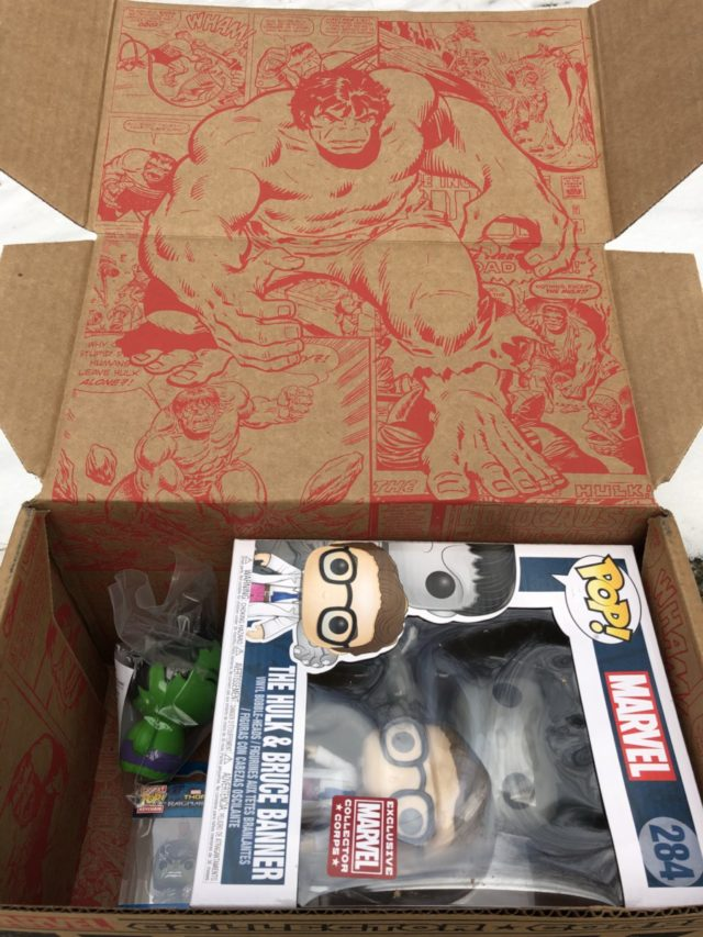 Hulk Collector Corps Box Unboxing Photos