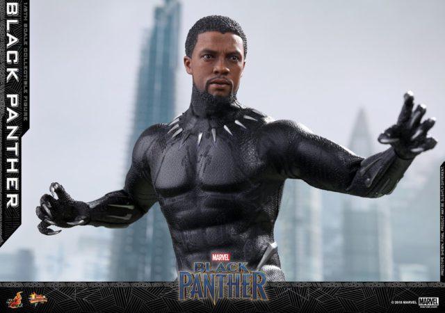 Black Panther Hot Toys Chadwick Boseman Portrait Head