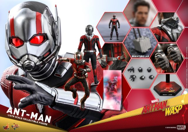 Hot Toys Ant-Man and the Wasp Ant-Man Figure and Accessories