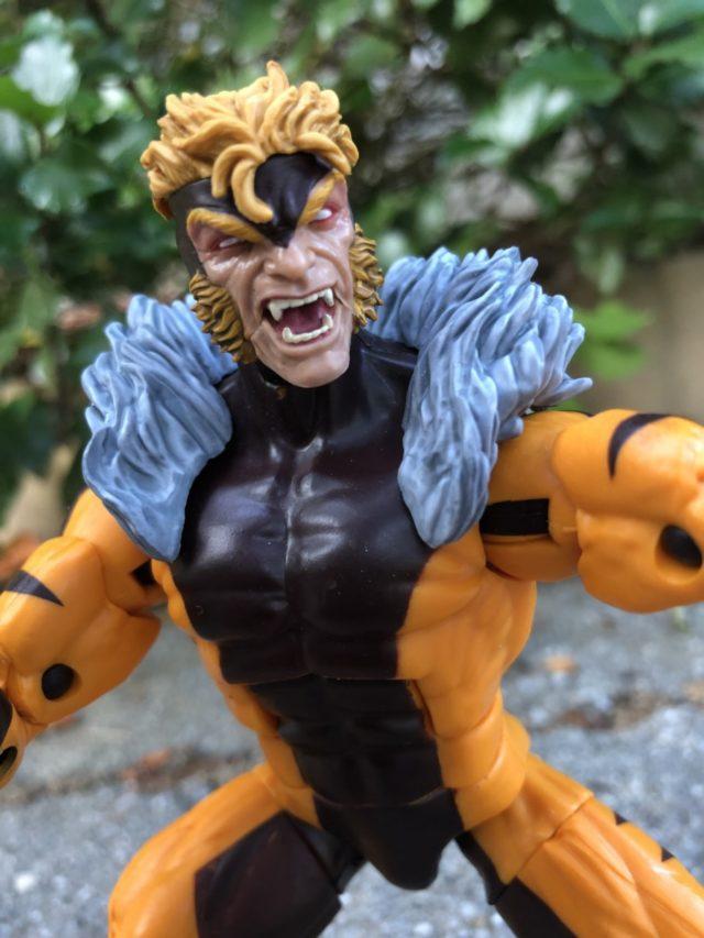 Close-Up of Marvel Legends Sabertooth Head Sculpt 2018 Hasbro