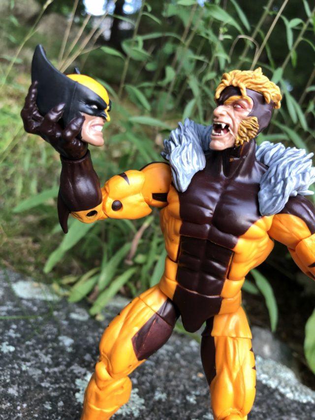 Marvel Legends X-Men Sabertooth Figure Review