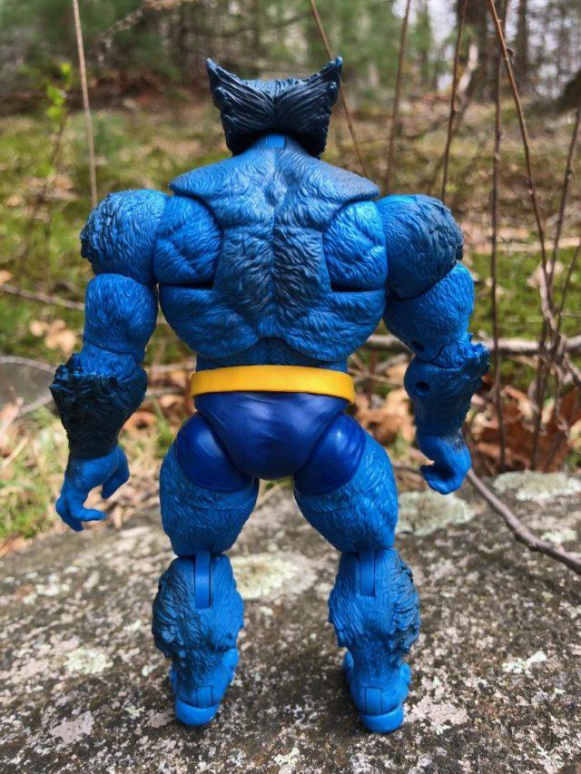 Back of Marvel Legends Beast Hasbro Figure