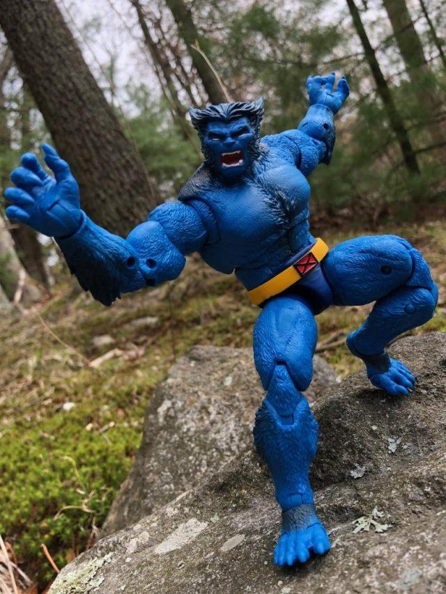 Hasbro Marvel Legends 2019 Beast X-Men Figure