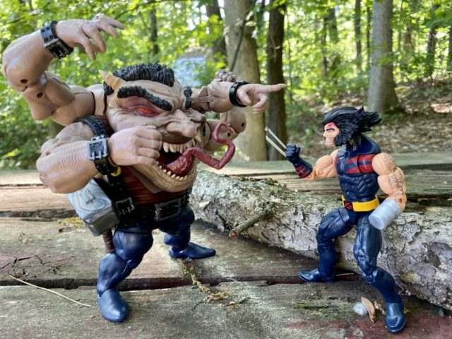 "Sugar Man Legends BAF vs AOA Weapon X Wolverine 6"" Figure"
