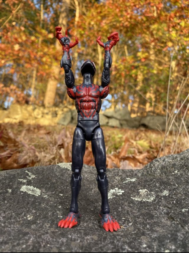 Marvel Legends Venompool Series Miles Morales Six Inch Figure Stretching