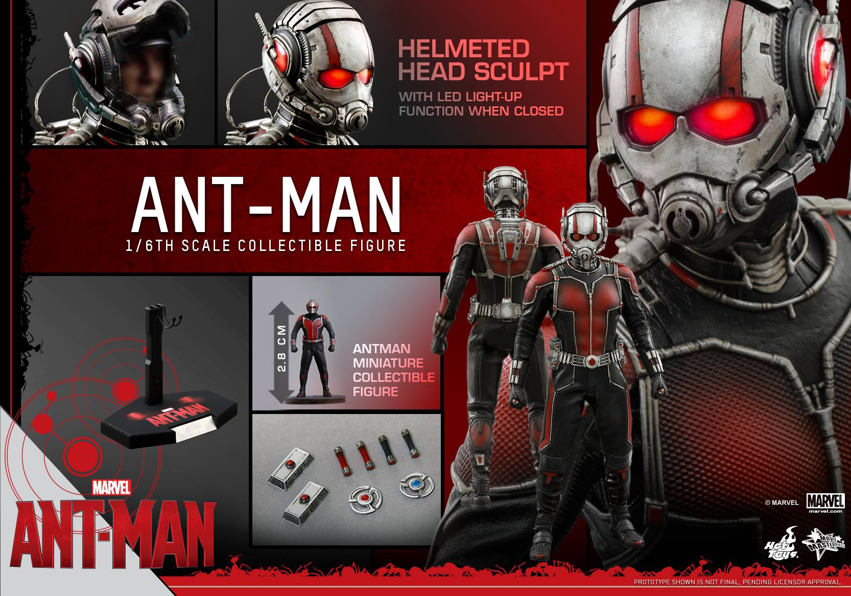 http://marveltoynews.com/wp-content/uploads/2015/07/Hot-Toys-Ant-Man-Sixth-Scale-Figure-and-Accessories.jpg